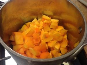 butternut squash soup 009