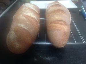 whole wheat artisanal loaf 046
