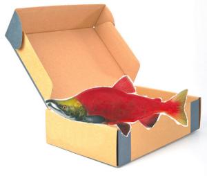 salmoninpackage