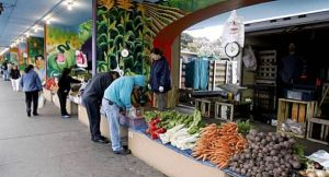 Alemany Farmer's Market (Copyright: Kurt Rogers, The Chronicle)