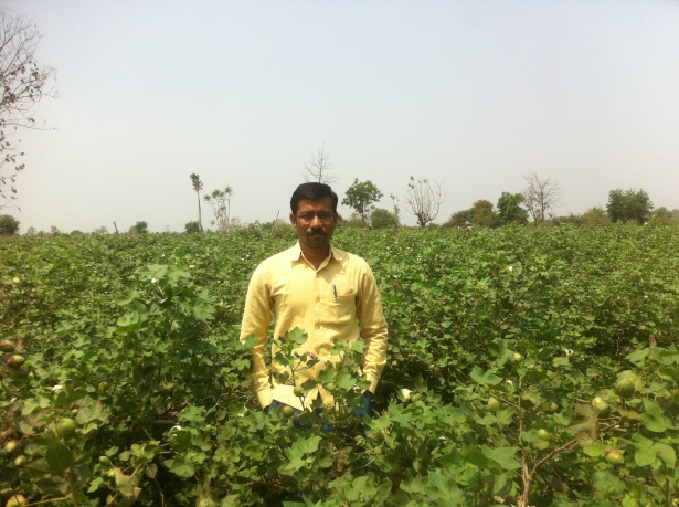 Prakash Puppalwar in Bt cotton farm