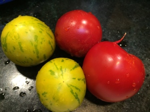 Tomatoes for salsa fresca