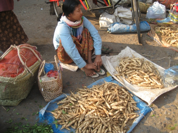 Winged bean roots for sale in Burma. (source: Wikimedia Commons user Wagaung own work)